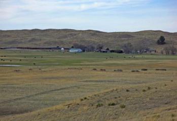 NE.pasture